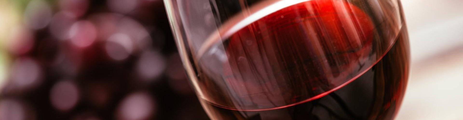 I vini di Valtellina in esposizione alla 53^ edizione di Vinitaly